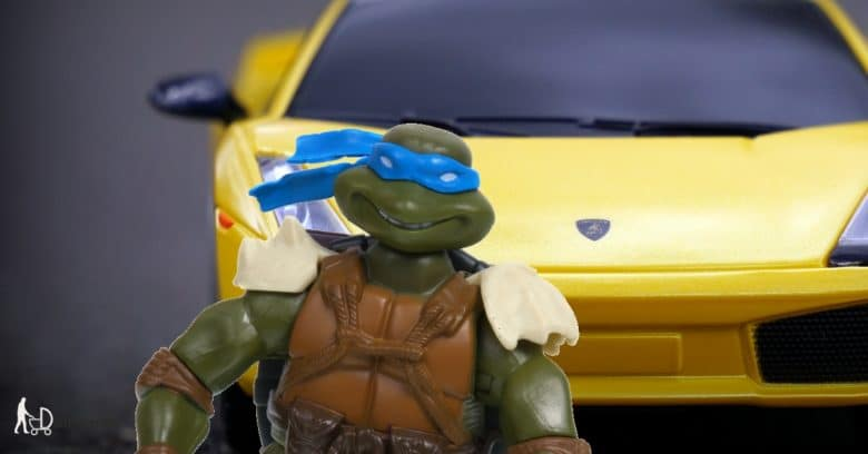 Turtle Leonardo