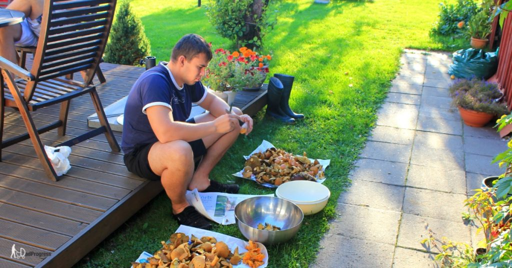 Gert sorts mushrooms in the garden