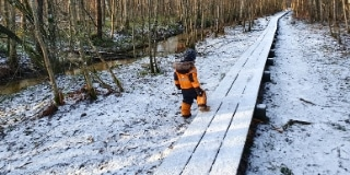 Toddler walking in the forest trail during winter (there's some snow)