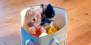 Treasure bag (you can see a pacifier, a teddy, a toothbrush in it) For toddler