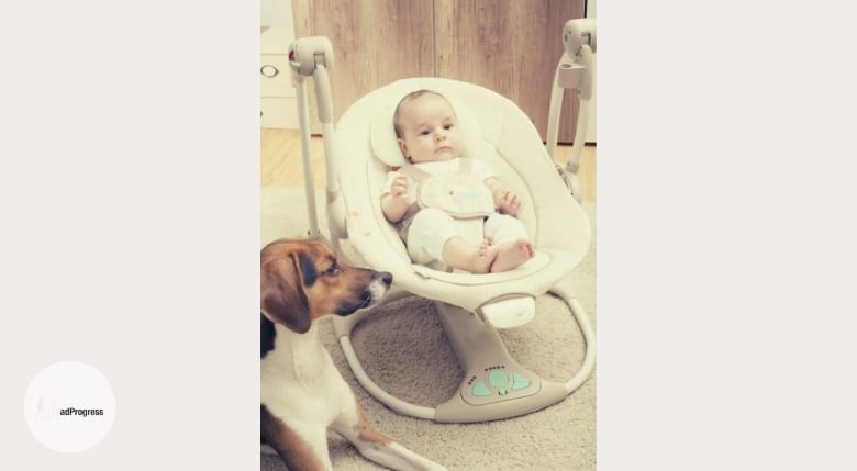 Baby In A Swing And A Dog Is Keeping Watch